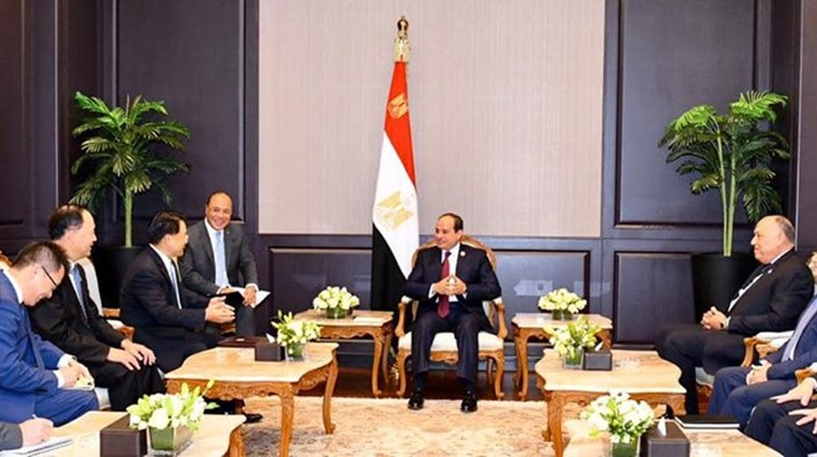 Egypt has always backed the efforts and projects of industrial development in Africa, identified development gaps that should be treated, and worked to attract donors to back them, UNIDO director-general said.