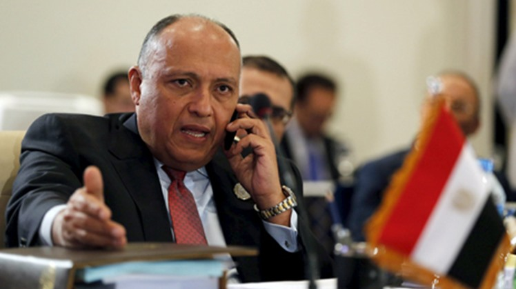 Egypt's Foreign Minister Sameh Shoukry and US secretary of State Mike Pompeo discussed strategic US-Egyptian relations in a telephone call Tuesday evening , Egyptian foreign ministry said.