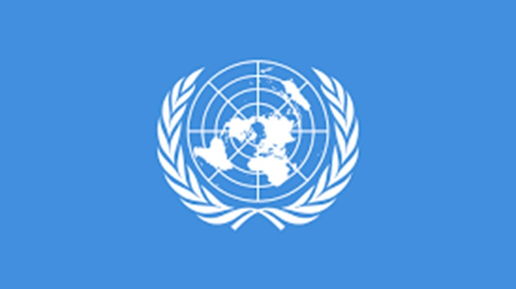 The United Nations Entity for Gender Equality and the Empowerment of Women (UN Women) issued a statement commending the National Council for Women for its efforts to ensure that a gender perspective is adopted in Egypt's COVID-19 response plan,