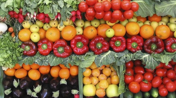 Head of the Central Department of Agricultural Quarantine at the Ministry of Agriculture Ahmed al-Attar said on Saturday that exports of vegetables and fruits have increased to 1,770,000 tons since the beginning of 2020.