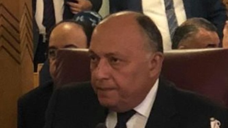 Egypt's Foreign Minister Sameh Shoukry on Monday received a phone call from his Norwegian counterpart Ine Marie Eriksen Soreid.