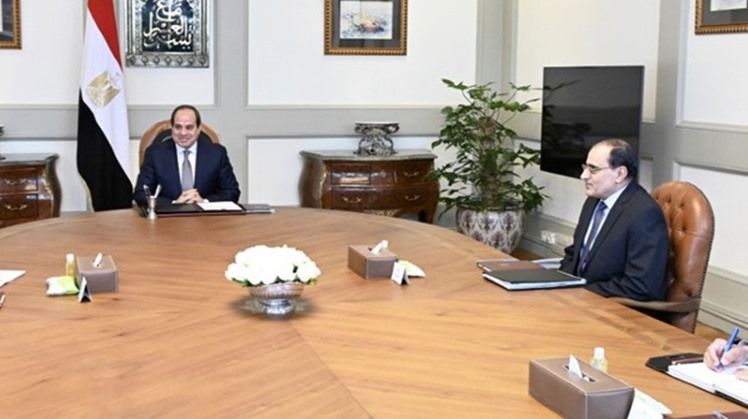 Egypt's President Abdel Fattah El Sisi directed the government to continue working on promoting national heavy industries which are vital for boosting nationa economy.