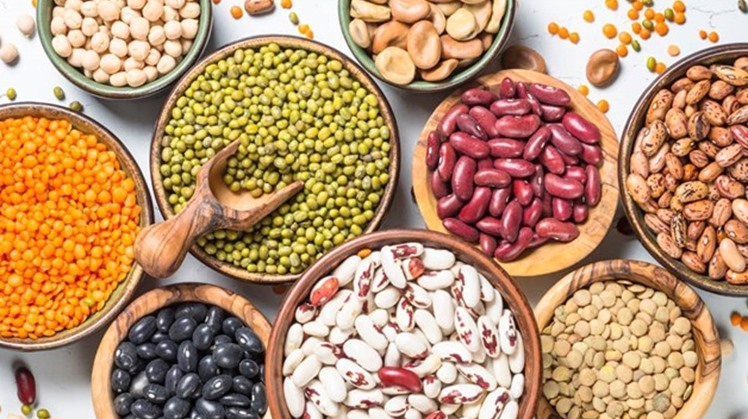 Egypt's Trade and Industry Minister Nevine Gamae issued a decision to extend the suspension of exporting beans and lentils for three more months starting from the date of the issuance of the decision.