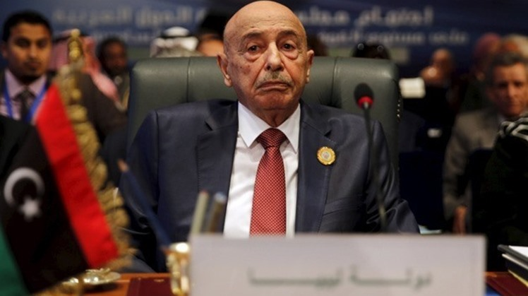All Libyan factions support Egyptian President Abdel Fatah al-Sisi's decisions aiming at preserving the country's national security and ending all violence and bloodshed in Libya