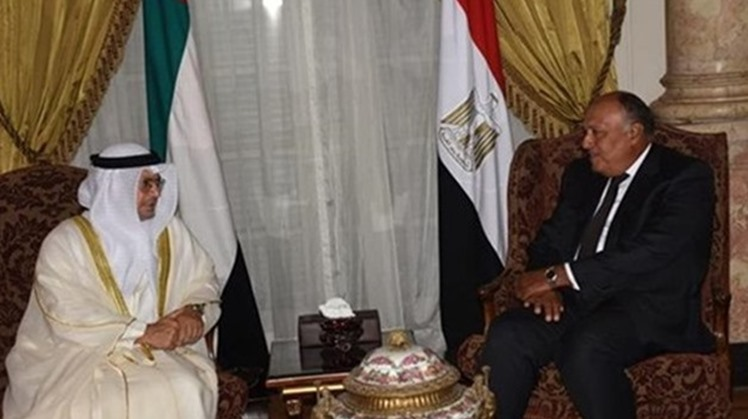 Egypt's Minister of Foreign Affairs and International Cooperation Sheikh Abdullah bin Zayed bin Sultan Al Nahyan lauded Egypt's strenuous efforts to reach a political solution for the Libyan crisis.