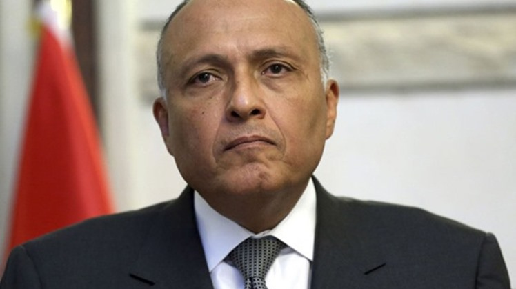 Egypt's Minister of Foreign Affairs Sameh Shoukry has confirmed that the statements made by the European and Arab countries regarding the Libyan crisis reflects the international interest in the Cairo Declaration