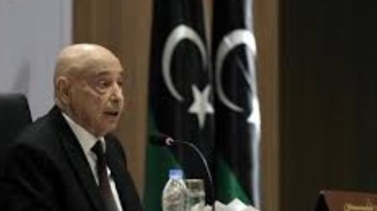 The Supreme Council of Sheikhs and Lords of Libya supported Tuesday the Libyan parliament's calling for an Egyptian military intervention in Libya to end the Turkish unlawful existence.