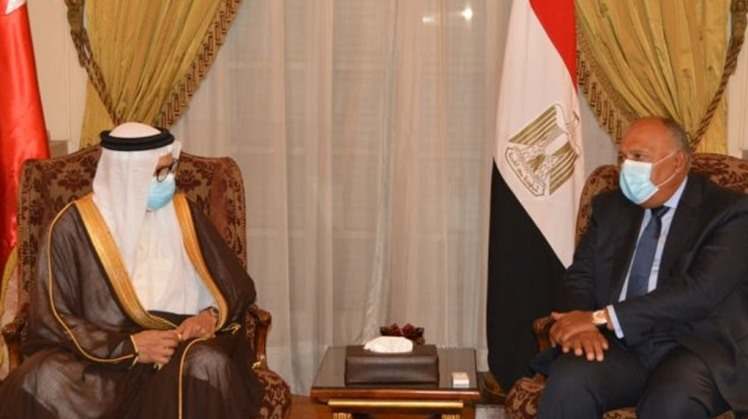 Egypt and Bahrain have agreed on the necessity to preserve the call for cease-fire initiative in Libya, which call for electing a new presidential council.