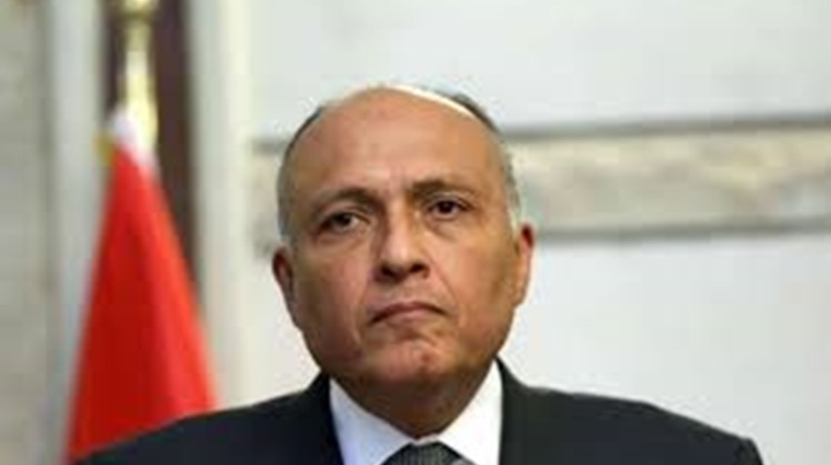 Egypt believes the total elimination of nuclear weapons, under international inspection, is necessary to establish peace, security and sustainable development, said foreign minister Sameh Shoukry during his address to the United Nations General Assembly.