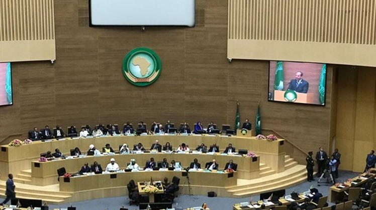 AU committee praises Sisi's suggestion on anti-terror unit