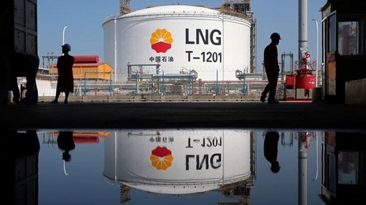 The first LNG cargo from the Egyptian governorate Damietta liquefaction plant in Egypt was successfully produced and lifted, The Italian Company Eni announced Monday.