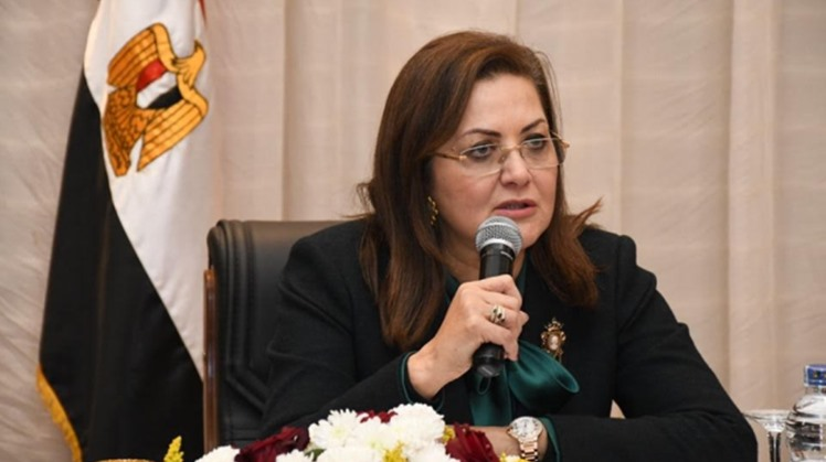 Egypt's Planning Minister Hala el Saeid has called for quick and daring steps to deal with repercussions of the coronavirus pandemic.