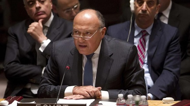 Egypt's FM discusses Gaza in a phone call with U.S. Secretary of State