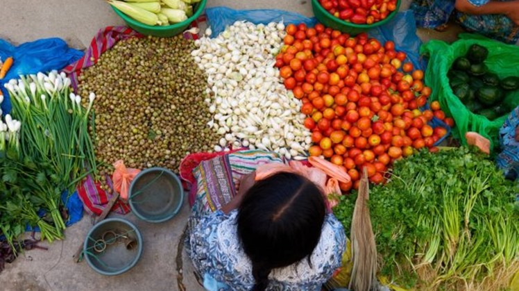 Egypt's food exports to European Union in 3 months reach $152M