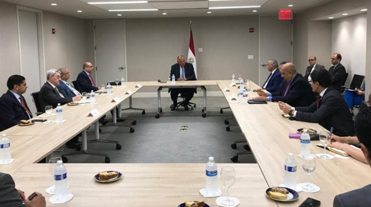 Egypt's FM meets with Arab committee concerned with coordinating on GERD with UNSC