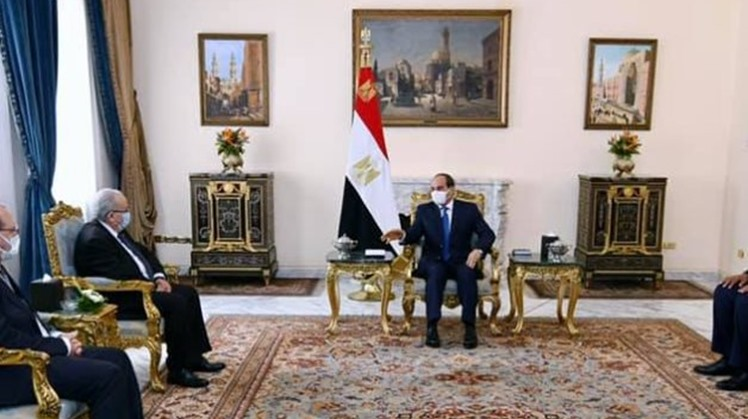 Sisi asserts Egypt's Nile water rights, need to resume GERD negotiations in meeting with Algerian FM