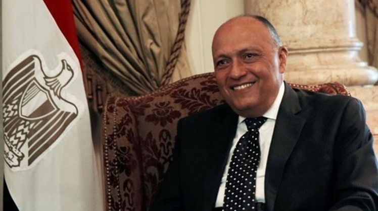 Norway invites Egypt's FM to take part in AHLC meeting at UNGA 76