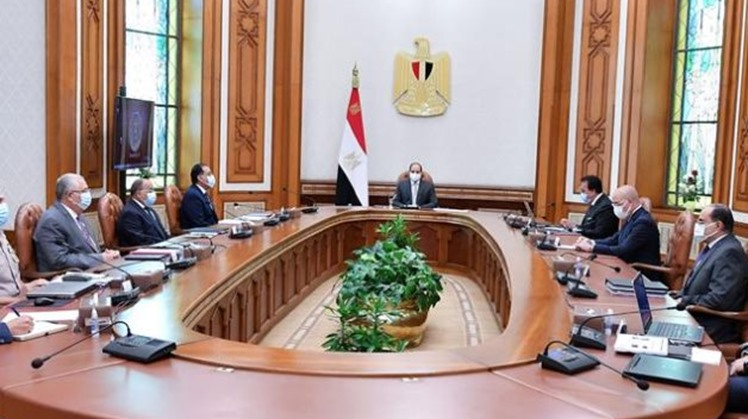 Sisi urges efficient use of water resources nationwide