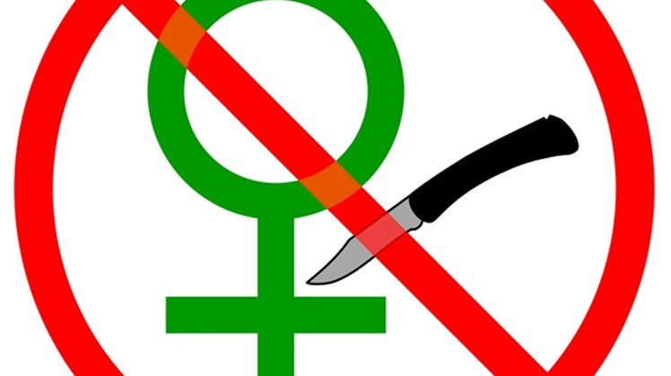 """The United Nations in Egypt praised on Monday, May 27, the positive and encouraging steps that the Egyptian government took to end Female Genital Mutilation """"FGM""""."""