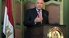 Foreign Minister Sameh Shoukry stressed on Monday the importance of increasing U.S. investments in Egypt in light of the promising investment and commercial opportunities offered by the Egyptian market.