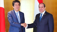 Egypt's President Abdel Fatah al-Sisi met on Wednesday with Japanese Prime Minister Shinzo Abe on the sideline of the Seventh Tokyo International Conference on African Development (TICAD).