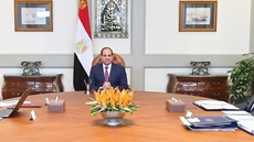Egypt's President Abdel Fattah al-Sisi asserted on Saturday on relevant authorities the importance to continue exerting maximum efforts to counter terrorism, extremism and crime