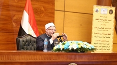 Advisor to the Egyptian mufti Dr Ibrhaim Negm headed for the US Monday to participate in week-long activities meant to shed light on Islam.