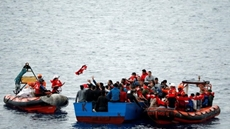 The International Organization for Migration (IOM) Director General António Vitorino said on Saturday that the rate of illegal immigration from Egypt to Europe has decreased over the past months to almost zero
