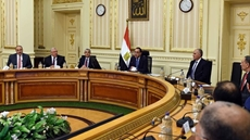 Egypt's Prime Minister Mostafa Madbouli has followed up the progress of a reclamation project of state-owned areas in Derb El Bahnasawi in the Upper Egyptian governorate of Minya.