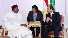 Niger President Mahamadou Issoufou on Friday received a message from President Abdel Fattah El Sisi on the Grand Ethiopian Renaissance Dam (GERD)'s file.