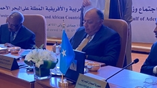 Egypt's Foreign Minister Sameh Shoukry on Thursday handed over a message from President Abdel Fattah El Sisi to President John Joseph Pombe Magufuli of Tanzania on the latest developments of the Grand Ethiopian Renaissance Dam (GERD) file.