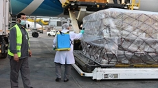 Egypt received on Saturday 30 tons of medical supplies from China Egypt's health ministry said in a statement.