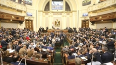 Egypt's House of Representatives, approved Monday in principal a bill to issue the Senate law.
