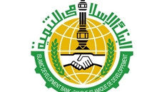 Cooperation between Egypt and the Islamic Development Bank Group recorded $12.8 billion through 338 projects, Minister of Trade and Industry Nevine Gamea said Monday.