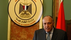 Egypt's Minister of Foreign Affairs Sameh Shoukry participates Wednesday via video conference in the meeting of the Foreign Ministers of the African Union Troika and Russia, according to spokesperson Ahmed Hafez.