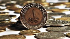 The Egyptian pound showed the best performance among the currencies of the emerging markets against the US dollar over the past three years, the Cabinet media center said on Monday.