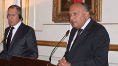 Egypt's Foreign Minister Sameh Shoukry stressed the necessity to achieve a ceasefire in Libya during a phone call on Tuesday with his Russian counterpart Sergey Lavrov.