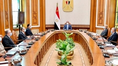 Egypt's Sisi calls for integrated action to increase productive agricultural lands in North Sinai, New Valley