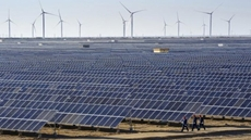 Egypt's total investments tapped in renewable energy projects that were added this year reached nearly L.E. 6 billion