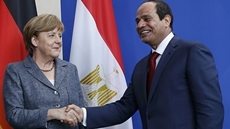 German Ambassador in Cairo praises successful cooperation with Egypt