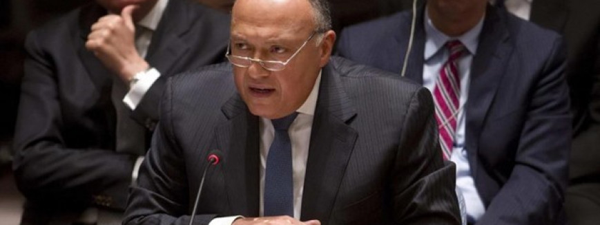 Egyptian Foreign Min. to take part in Res Sea ministerial meeting
